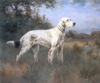 an english setter in a wooded landscape