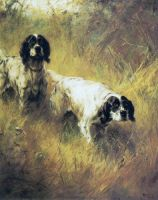 lady darnstone and mona englishsetter