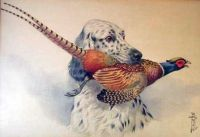 Boris Stefanovitch Riabouchinsky English Setter