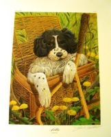 John Ruthven Nellie the English Setter