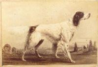 1880_1