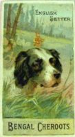 1890_4