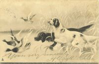 1903_1