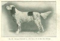 1906_3
