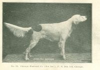 1906_4