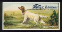 1916_2