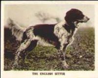 1926_3