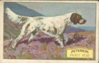1930_8